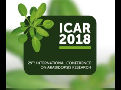 ICAR 2018 3x4