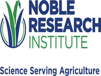Logo Noble Institute