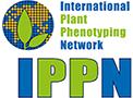 IPPN Logo